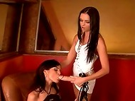 Sexy chicks armed with strap-on gathered in the secret club for desperate lesbians
