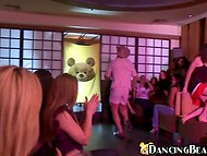 Trainer and his tame dancing bear prepared a strip act for female audience